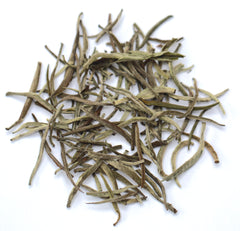 Korakundah White - The world's highest grown organic white tea