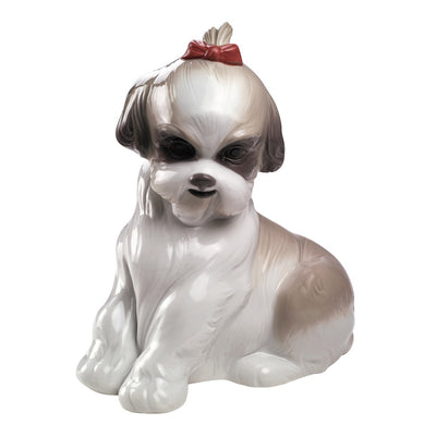 Nao by Lladro Pampered Shih-Tzu Figurine