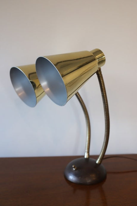VINTAGE DOUBLE GOOSE  NECK LAMP