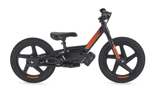 IronE16 Electric Stability Bike