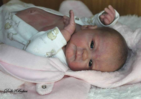 CUSTOM ORDER Reborn Doll Baby Girl or boy Seraphina by Elisa Marx 3/4 arms Full Legs German Glass Eyes You Choose All The Details Layaway Available!