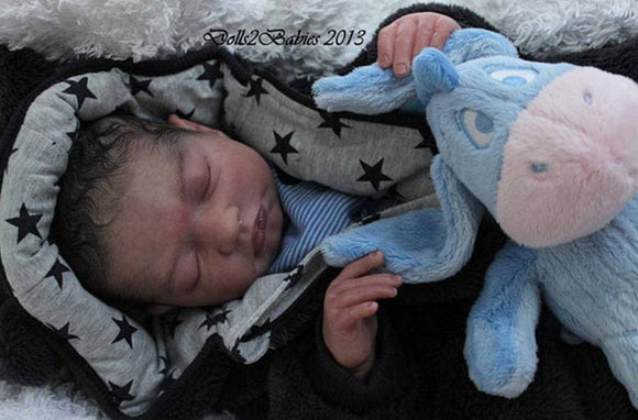 WANT TO MAKE AN OFFER?  CUSTOM ORDER Reborn Doll Baby Girl or boy  Isaac by Stephanie Sullivan 21 inches 3/4 limbs (Reborn Babies)
