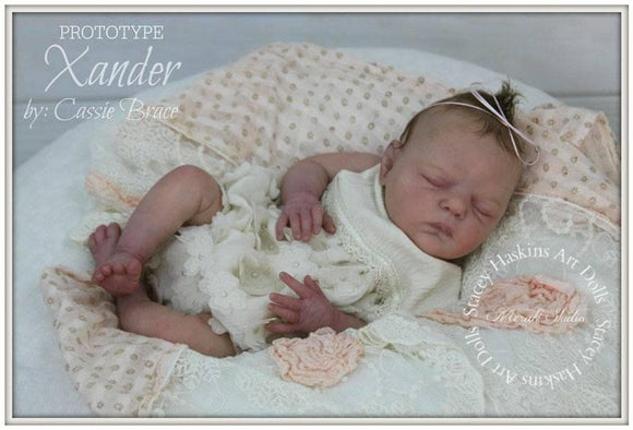 CUSTOM ORDER Reborn Doll Baby Girl or boy Xander by Cassie Brace LE 500 18 inches  Full Limbs (Reborn Babies) - mylittlestblessings.myshopify.com reborn baby, reborn doll, art dolls, custom babies, reborn babies