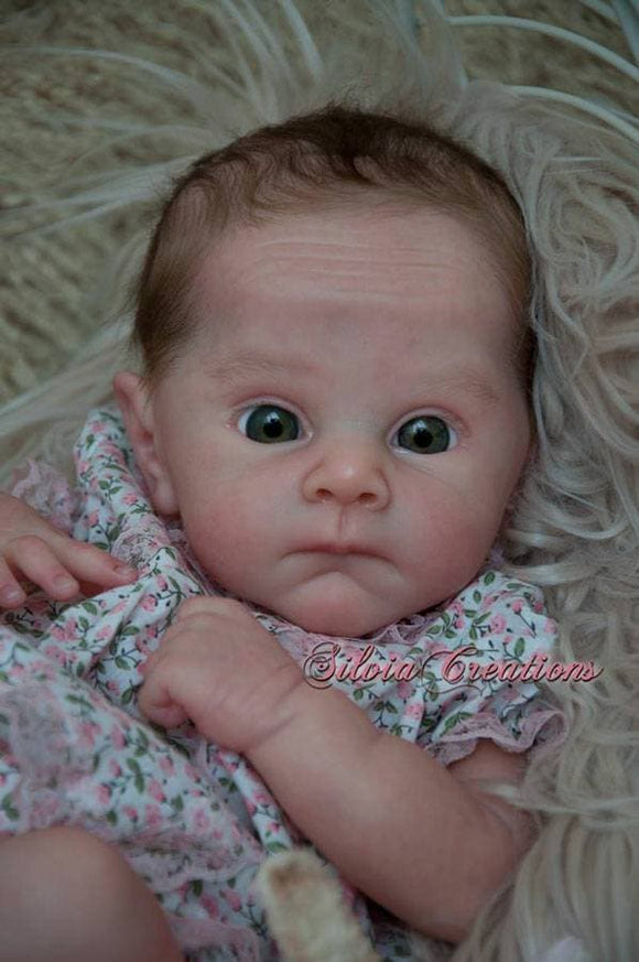 CUSTOM ORDER Reborn Doll Baby Girl or boy Ollie by Adrie Stoete 19 inches  Full Limbs. 4-6 pounds (Reborn Babies) - mylittlestblessings.myshopify.com reborn baby, reborn doll, art dolls, custom babies, reborn babies