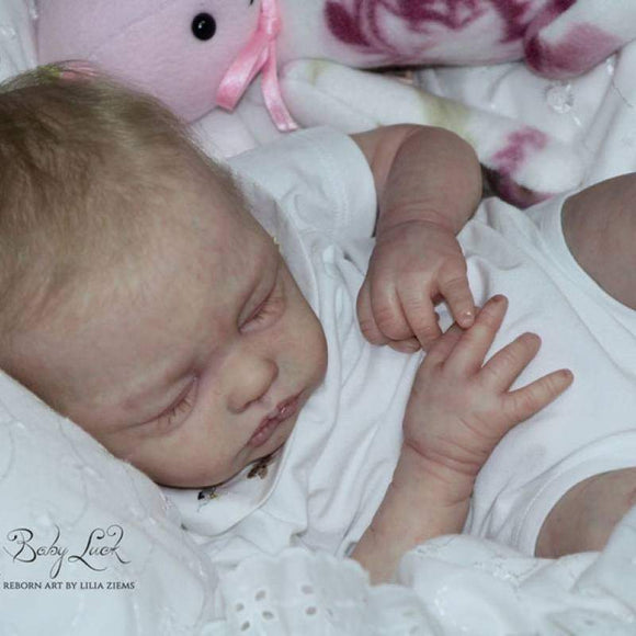 CUSTOM ORDER Reborn Doll Baby Girl or boy Lilia By Phil Donnelly 19 inches  4-6 lbs  Full Limbs You Choose All The Details Layaway Available!
