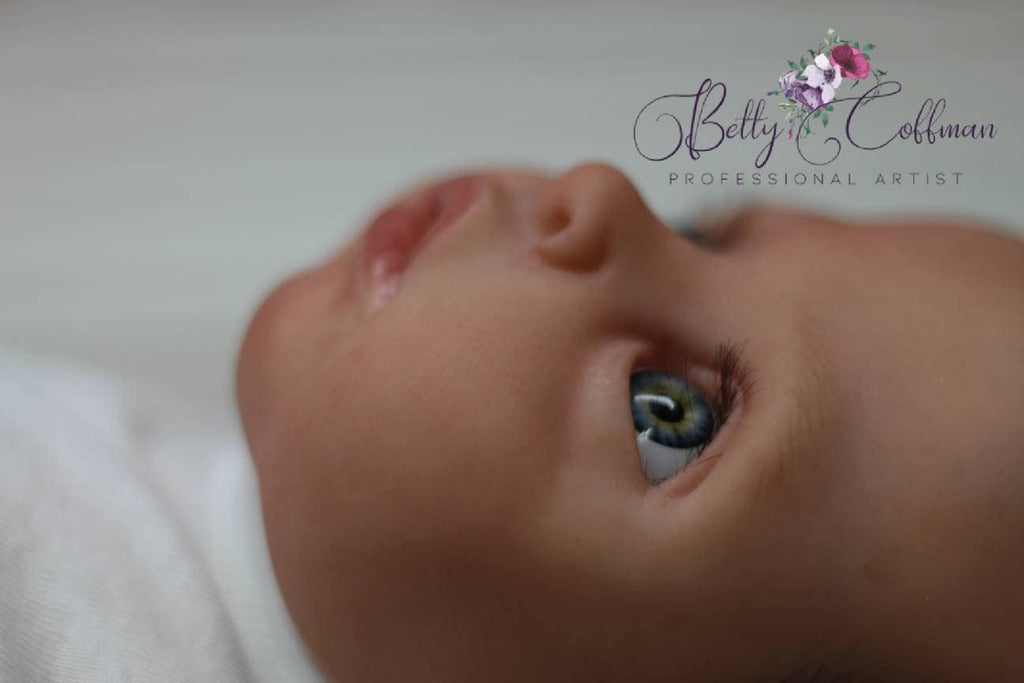HIGH END Custom Remake rEbOrN bAbY Approximate Weight 6.5 lbs Colin by Lucie Boiron