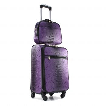 2 Piece Purple Carry-On Luggage Set