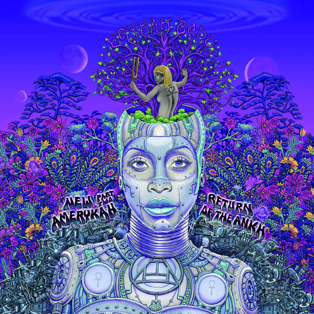 "Erykah Badu - ""New Amerykah Part Two: Return Of The Ankh"" 2LP Vinyl"