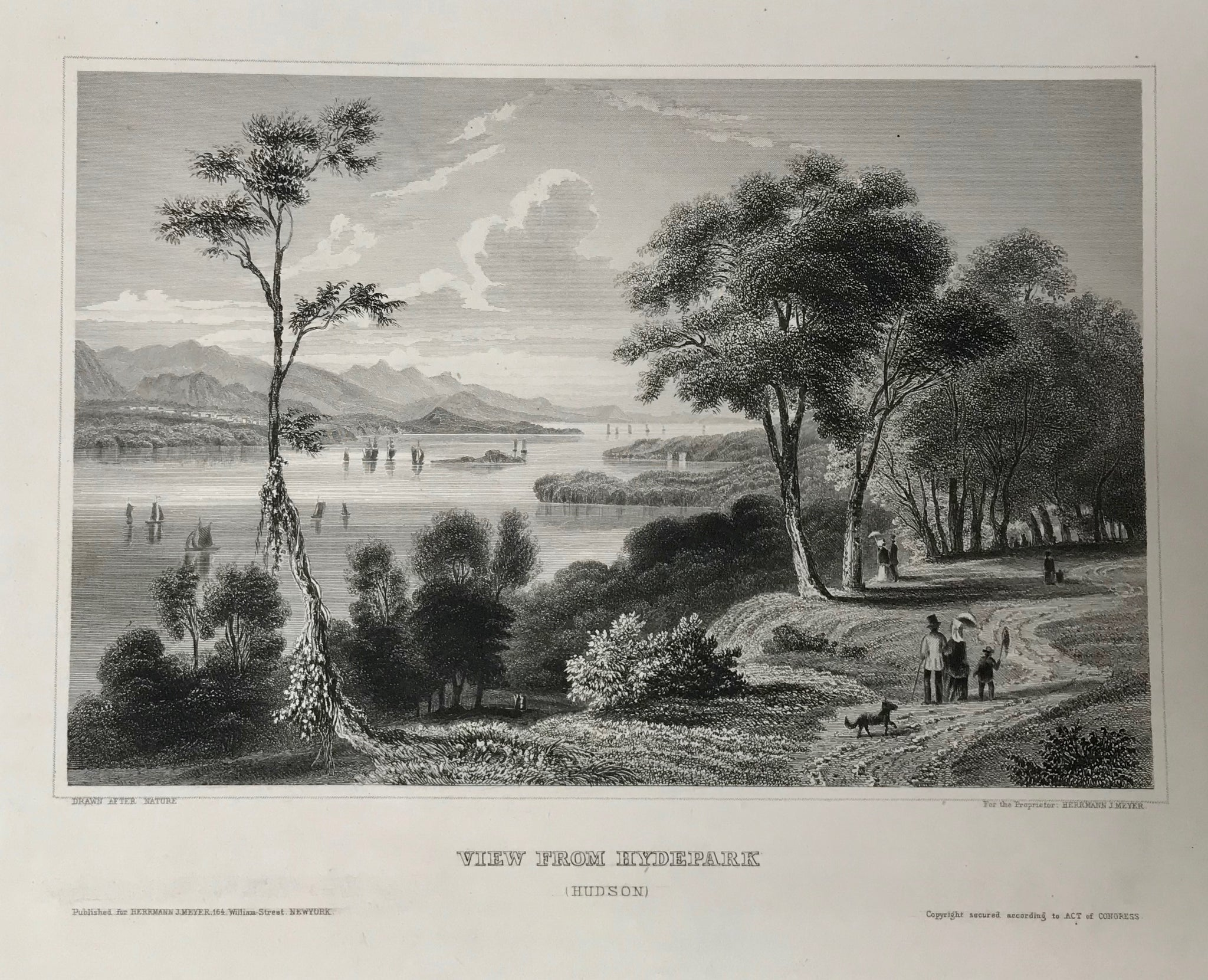 """View From Hydepark""  (Hudson)  Attractive steel engraving ca 1850. Published for Hermann Meyer in New York."