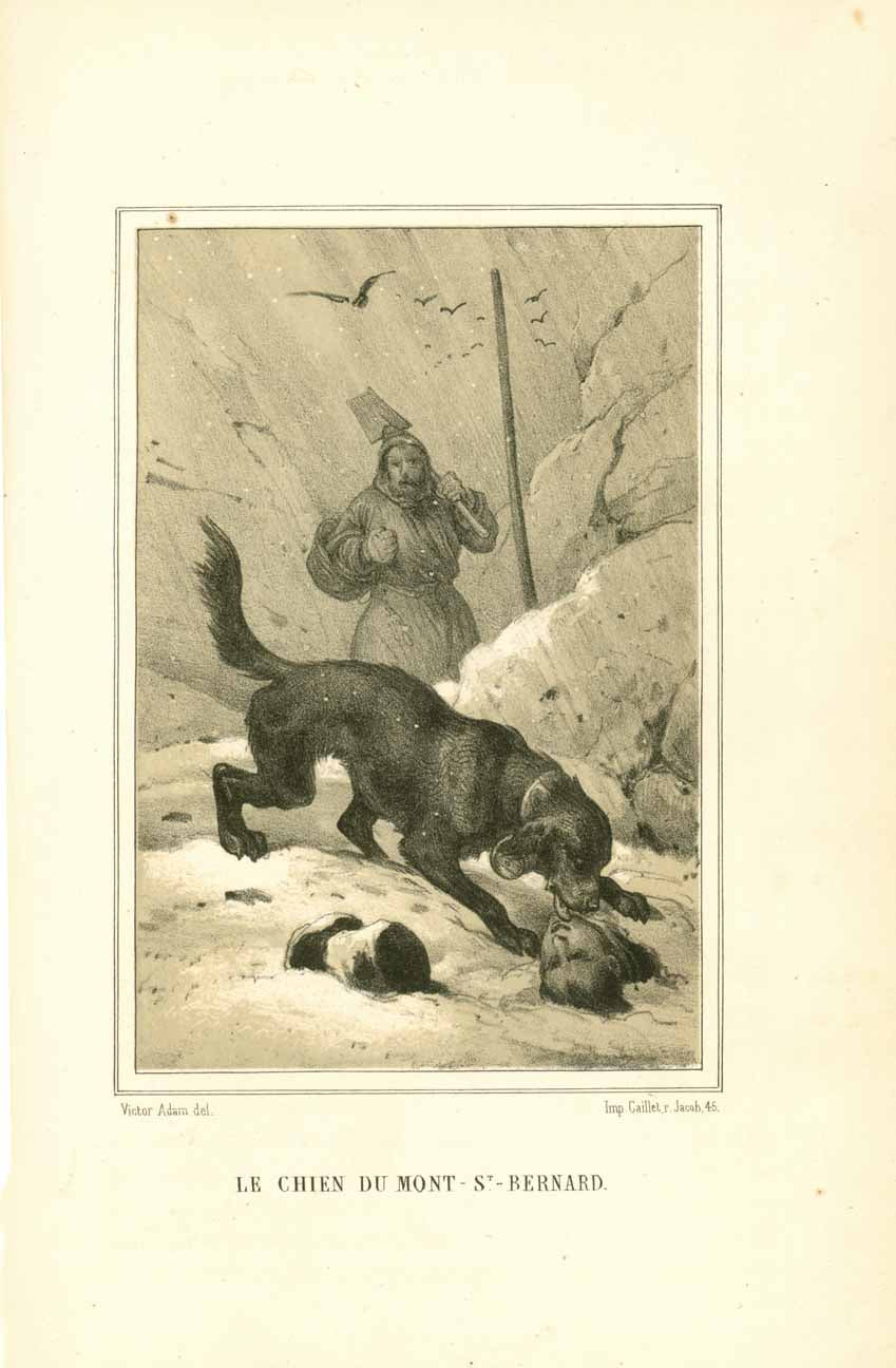 """Le Chien Du Mont St. Bernard""  Toned lithograph after Victor Adam. Published 1884.  Minor signs of age and use."