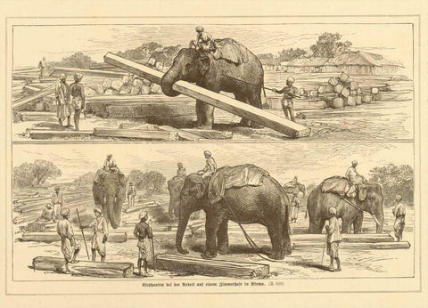 """Elephanten bei der Arbeit auf einem Zimmerhofe in Birma""  Wood engraving of elephants working at a lumber yard in Burma. Published ca 1875. Reverse side is printd ith unrelated text."