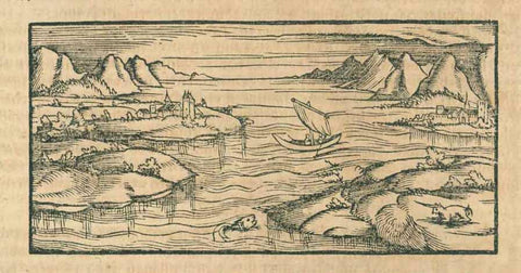 "Canary Islands / Kanarische Inseln  Woodcut.  Published in ""Cosmographia"" by Sebastian Muenster (1488-1552). German edition  Basel, 1553  Sebastian Muenster writes about the Canary Islands: """"Insulae Fortunatae (The Happy Islands) are now called Canary Islands or Dog Islands - Latin: Canis = Dog), because the indigenous people possess so many dogs""  The name Dog Islands did not last very long, however."
