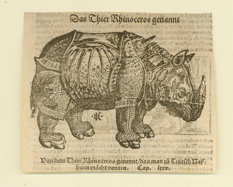 """Das thier Rhinoceros genant""  Woodcut by David Kandel after Albrecht Duerer. Published in ""Cosmographia"" by Sebastian Muenster. Basel, 1553  Original antique print   Woodblock had split and was repaired for further printing, which explains white line through animal.  Paper naturally age-toned. No upper and lower margins.  Print from reverse side visible. Print is mounted on stronger paper."