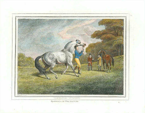 """The Racing Stallion""  Hand-colored stipple copper engraving by Samuel Howitt (1756-1822)  Published in London, dated 1799"