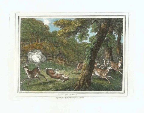 """Shooting a Buck""  Hand-colored stipple copper engraving by Samuel Howitt (1756-1822)  Published in London, dated 1799"