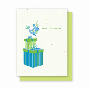 Grow A Note - Happy Birthday Blue Bird Cards - green envelopes - pack of 4 cards