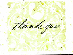 Grow A Note Just - Thank You Blank Cards - yellow envelopes - pack of 5 cards