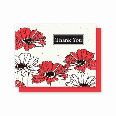 Grow A Note Just -Gerber Daisy Thank You Blank Cards - red envelopes - pack of 5 cards