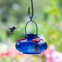 Bloom Hummingbird Feeder