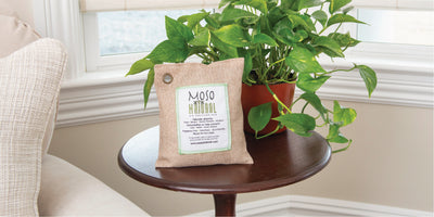Natural Air Purifying Bags