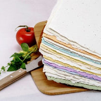 Handmade Plantable Seed Embedded Paper - 3 sheets per pack