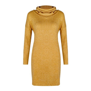 Womens Knitted Sweater Jumper Turtleneck Mini Dress Ladies Knitwear Winter Long Sleeve Dress