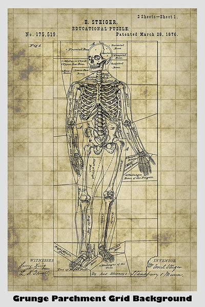 Antique Human Skeleton Puzzle Patent Print Art Poster