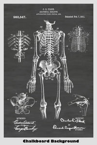 Human Skeleton Poster on Chalkboard Background
