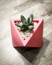 Load image into Gallery viewer, Triangular Planter