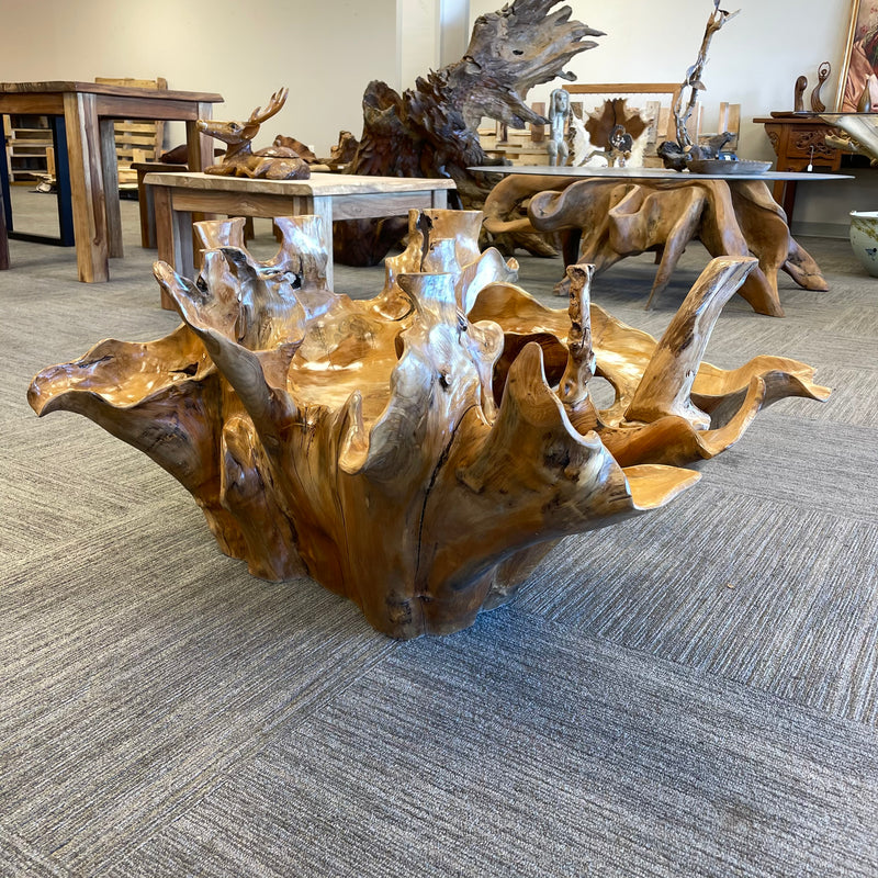 Round Root Coffee Table 48""