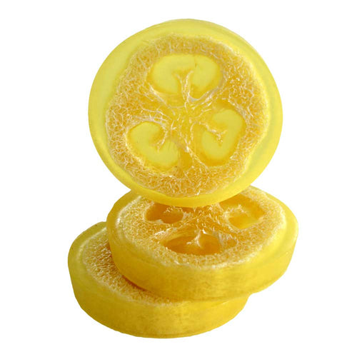 Olive Oil Loofah Soap Beach Daisies-Free Shipping