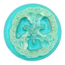 Load image into Gallery viewer, Olive Oil Loofah Soap - Ocean