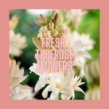 Load image into Gallery viewer, Mademoiselle Tubéreuse Gold Tin Candle | tuberose flowers