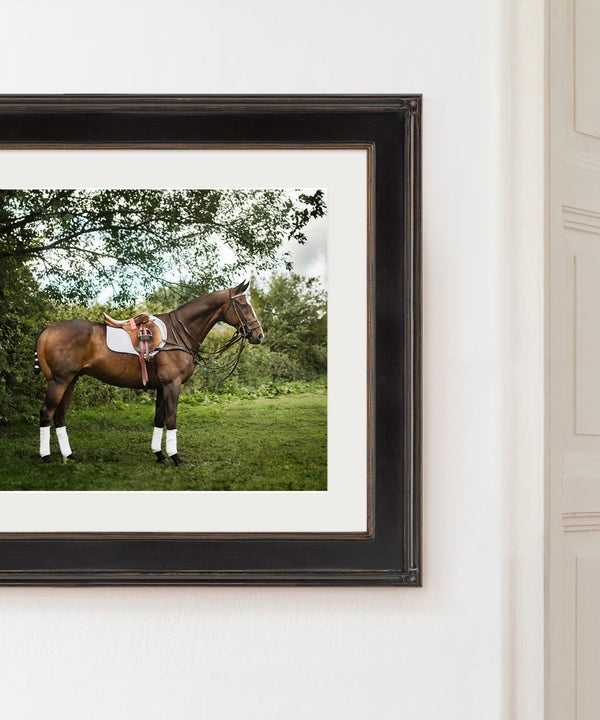 Polo pony art print