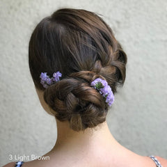 Light Brown Braided Updo Easy Updo Extensions