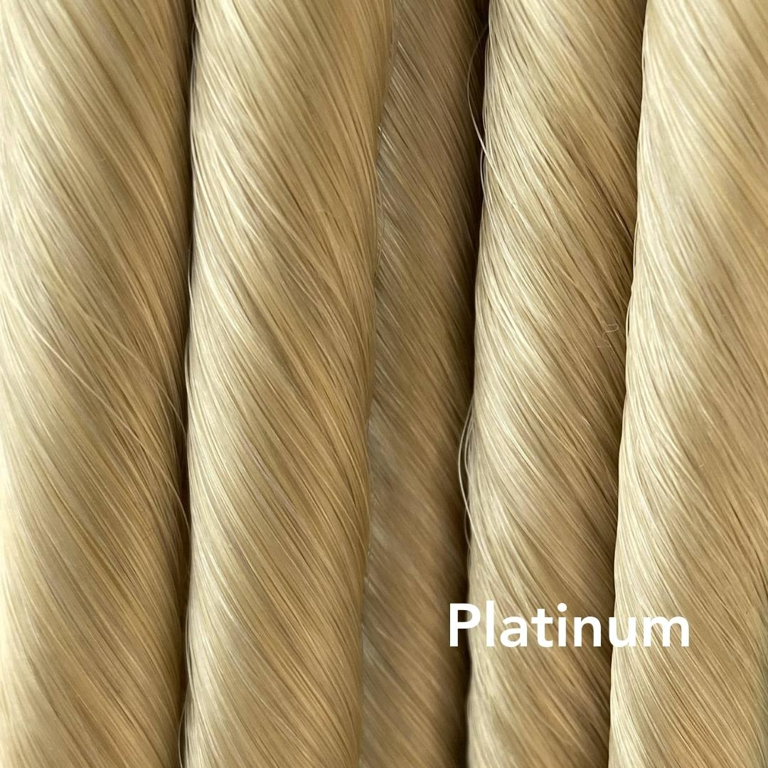 Platinum Blonde Easy Updo Extensions Color Sample