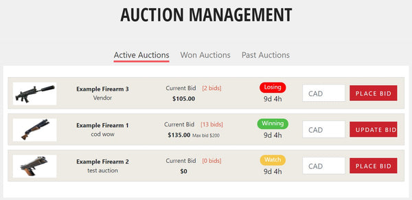 my auction screenshot