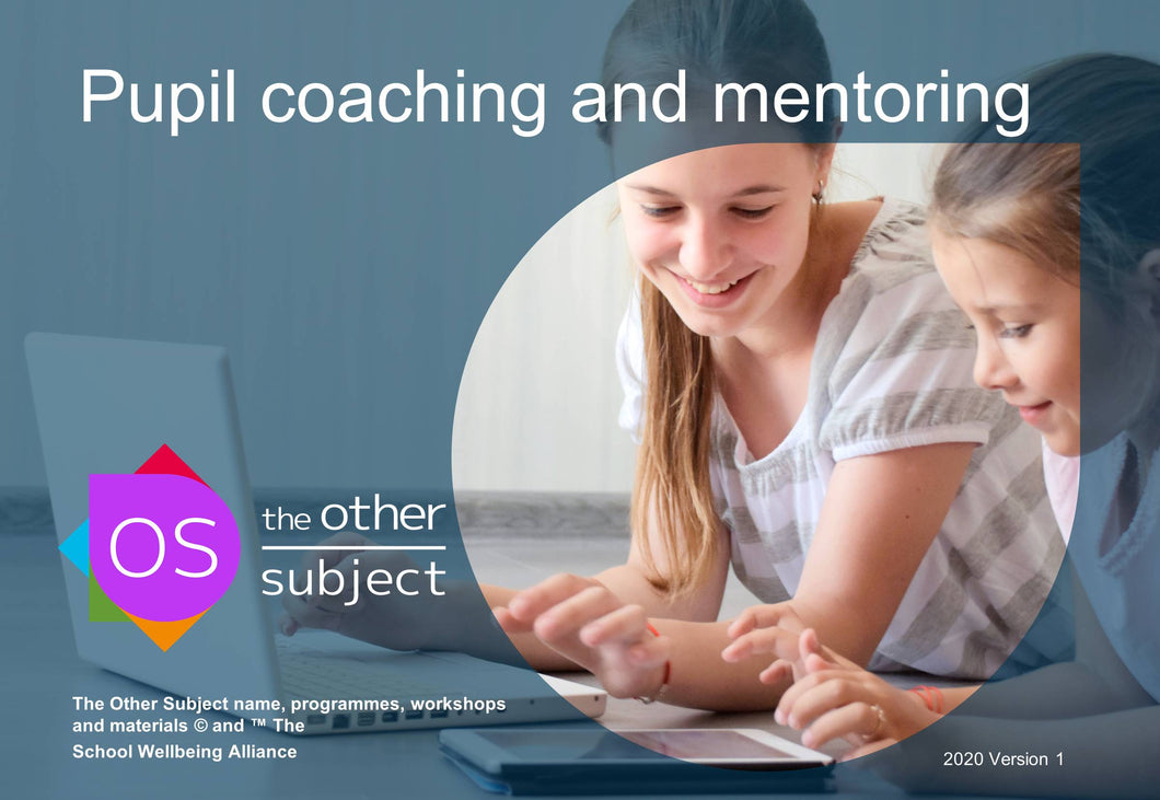 Pupil coaching and mentoring- Extra participants