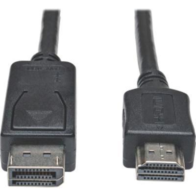 10ft Displayport HD Cbl Adptr