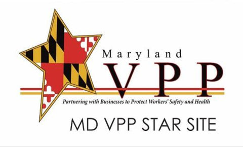 Maryland Star Site Banner - #223217MD