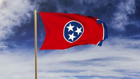 Tennessee Outdoor State Flag - #402832