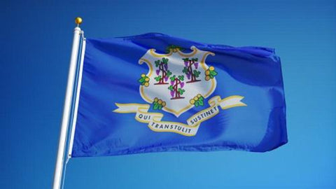 Connecticut Outdoor State Flag - #402797