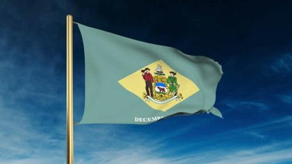 Delaware Outdoor State Flag - #402798