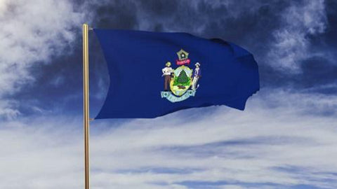 Maine Outdoor State Flag - #402809