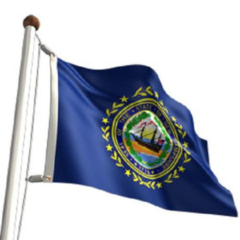 New Hampshire Outdoor State Flag - #402819