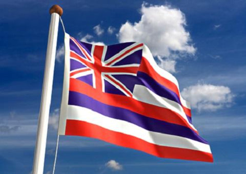 Hawaii Outdoor State Flag - #402801