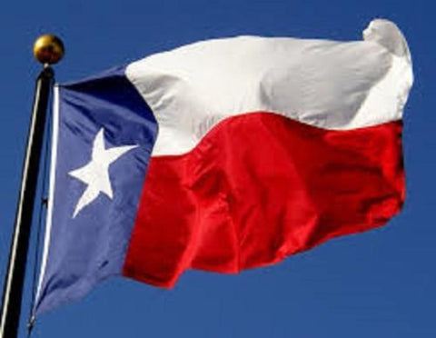 Texas Outdoor State Flag - #402833