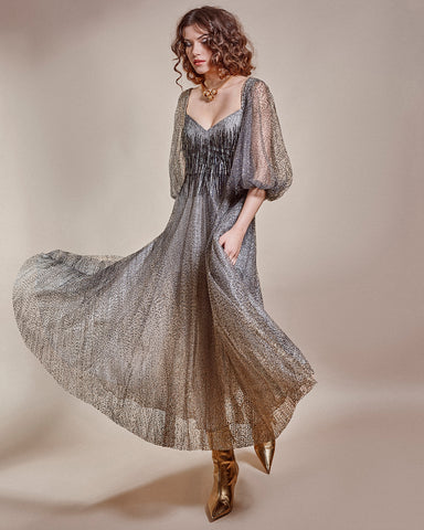 Shimmery Long Dress