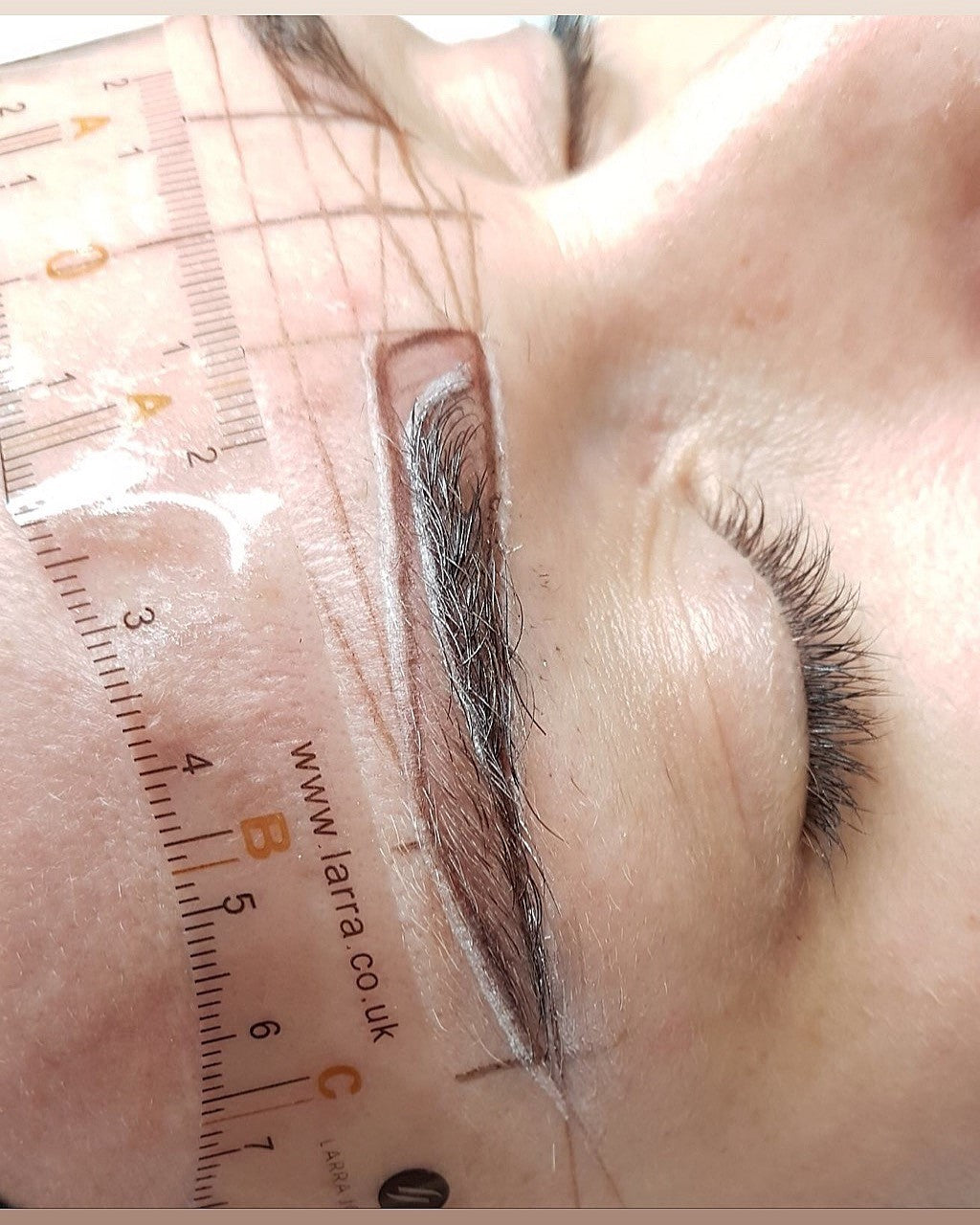 Sticky Brow Ruler x 50