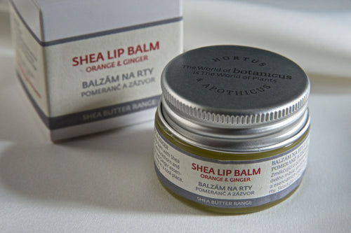 Shea Lip Balm Orange & Ginger